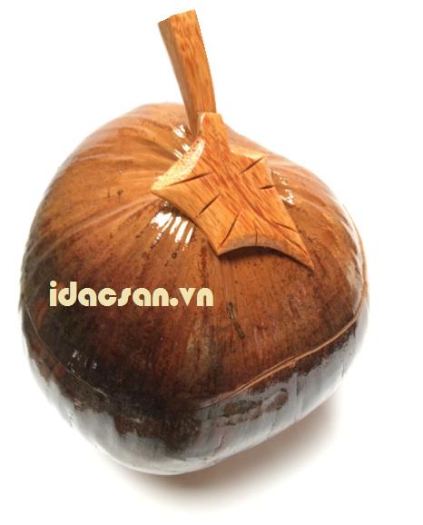 vỏ bình giữ ấm bằng trái dừa mỹ nghệ bến tre